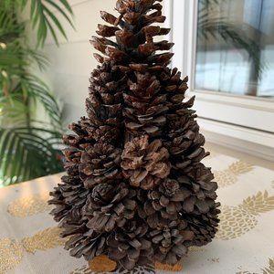 Pinecone Evergreen tree